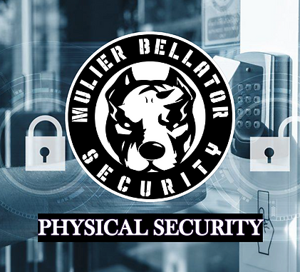 PHYSICAL SECURITY.png