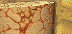 Zirconia-rich fused-cast refractory