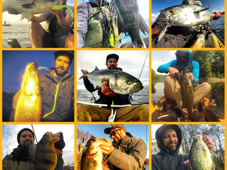 The Trials and Tribulations of the Multi-Species Angler