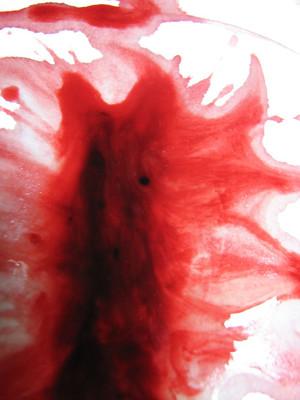 menstrual cycle awareness