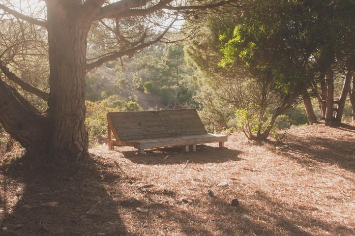 yoga retreat in nature