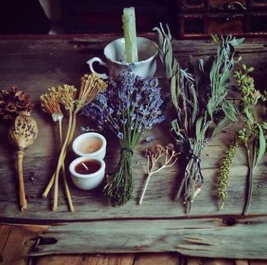 womens herbal retreat
