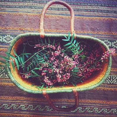 womens herbal retreat