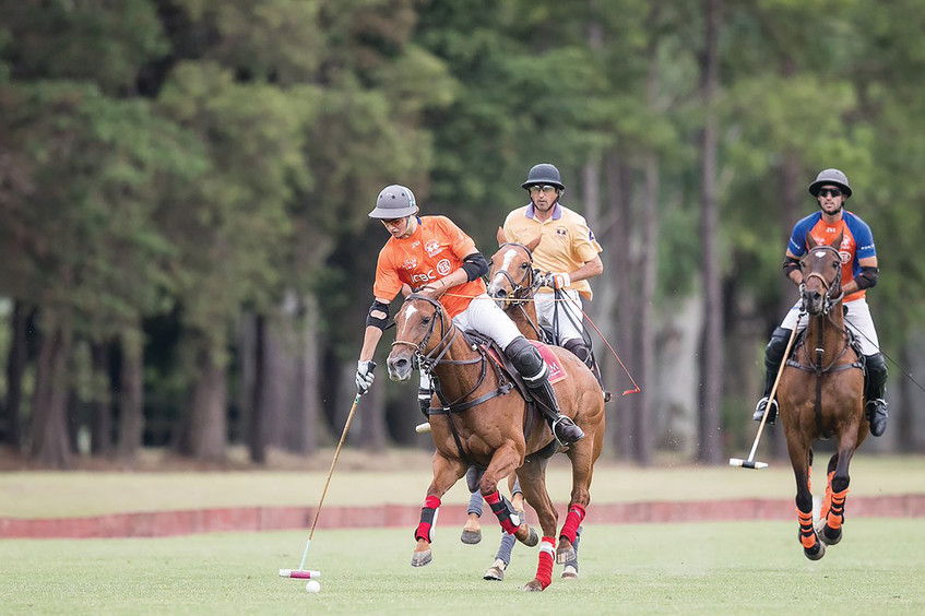 Bigatti on saddle