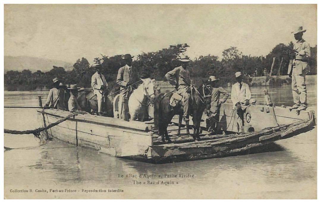 Horses crossing a river in Haiti