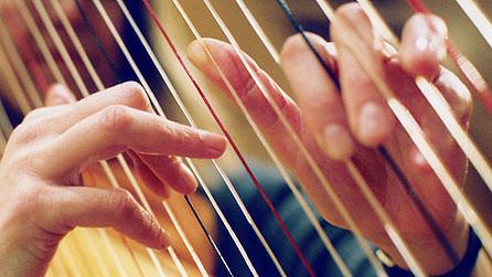harp strings fingers.jpg