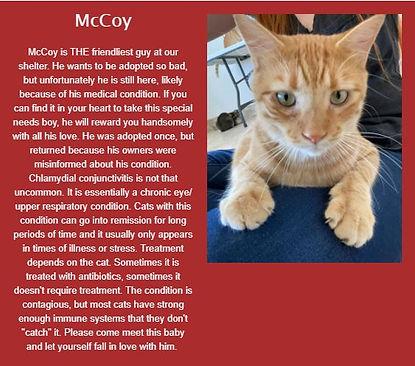 McCoy.jpg