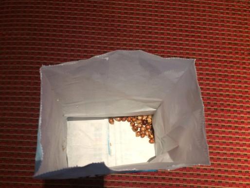 Popcorn-gate, an unexpected development... (#30)