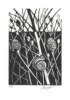 'Snail'