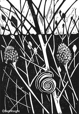 Snail lino cut by Beth Knight printmaker