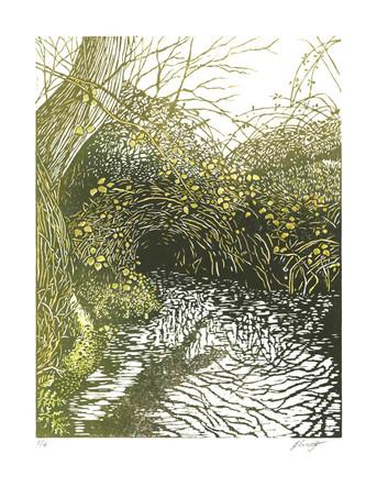 'Hidden Stream'