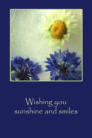 Solskinn og smil - Sunshine and Smiles