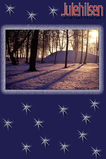 Vinterstemning - julekort