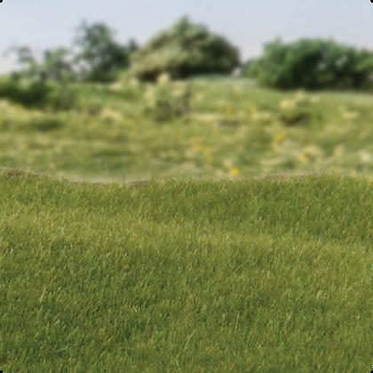 FS613 2mm Static Grass Dark Green
