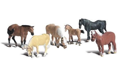 N Farm Horses