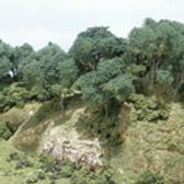 Tree kits 3.png