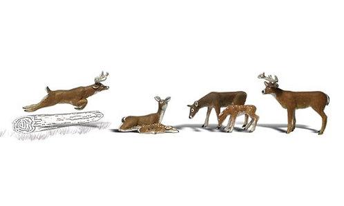 0 Deer