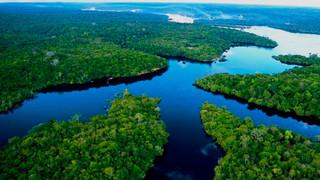 Amazônia: desafios e sonhos