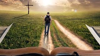 Ano da Bíblia...