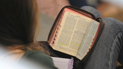 Bíblia: Palavra que desafia e liberta - Entrevista temática com o Prof. Noli Hahn