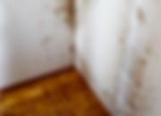 Analyse de dégats : Immeuble de logements à Chavornay