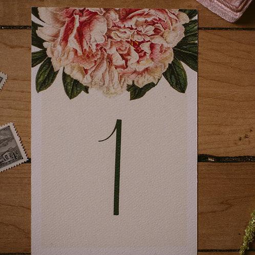 Modern Botanist Set of Table Numbers