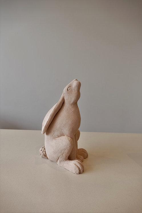 Animal sculpture - one day workshop