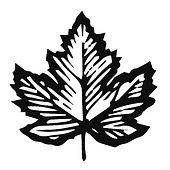 Leaf 2.0.jpg
