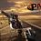 Thumbnail: TRIKE PAP ROLLING TRIKE
