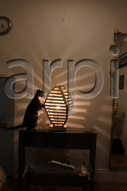 2021-arpi-lamp (73).jpg