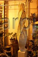 2021-arpi-lamp (84).jpg