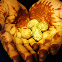 Hands-Eman_Ali_©_ALL_RIGHTS_RESERVED.jpg