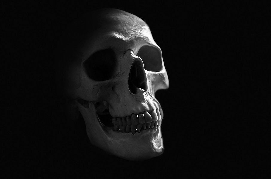 anatomy-71730_960_720.jpg