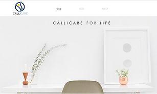 IMAGE_WIX Callicare Pricing Web Service.