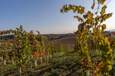 Fubine Monferrato - by Anne Conway Photography - 2018 - www.anneconway.com