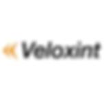 veloxint logo.png