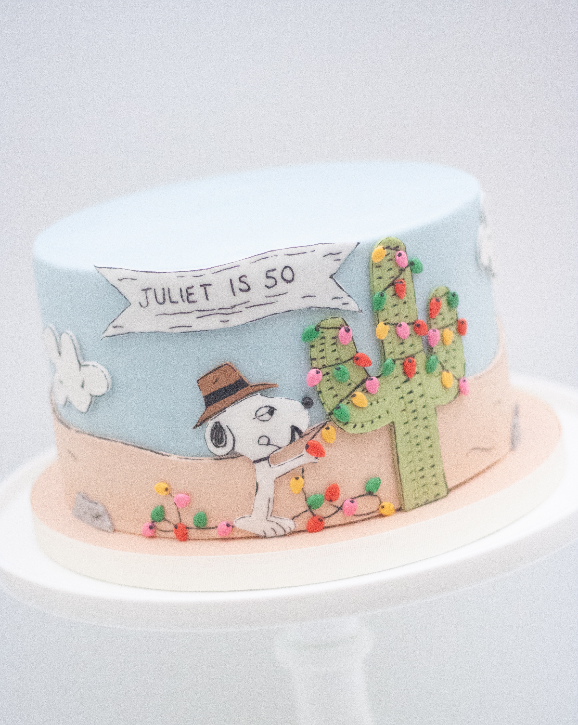 Spike Peanuts cake_