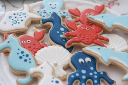 seaside cookies
