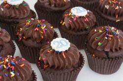 choc cupcakes sprinkles 20 vegan