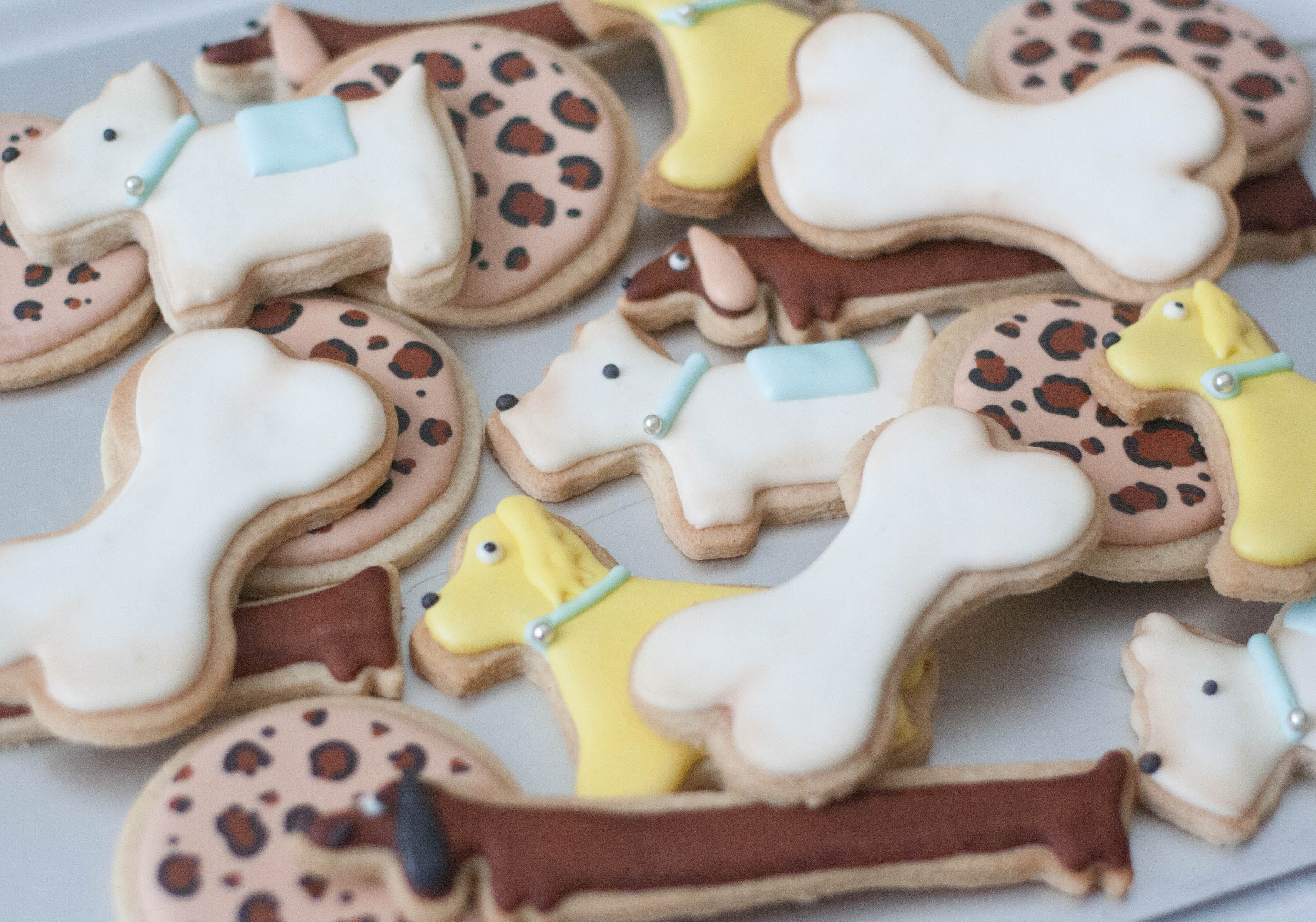 dog leopard print cookies vegan