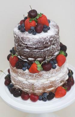 two tier naked vegan cake