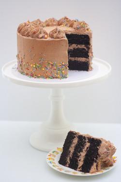Choc fudge sprinkle birthday cake