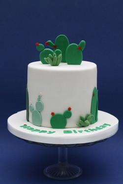 cactus cake-2