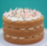 8 inch vegan vanilla biscoff cake.jpg