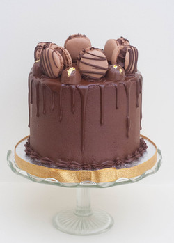 choc fudge vegan cake with macarons