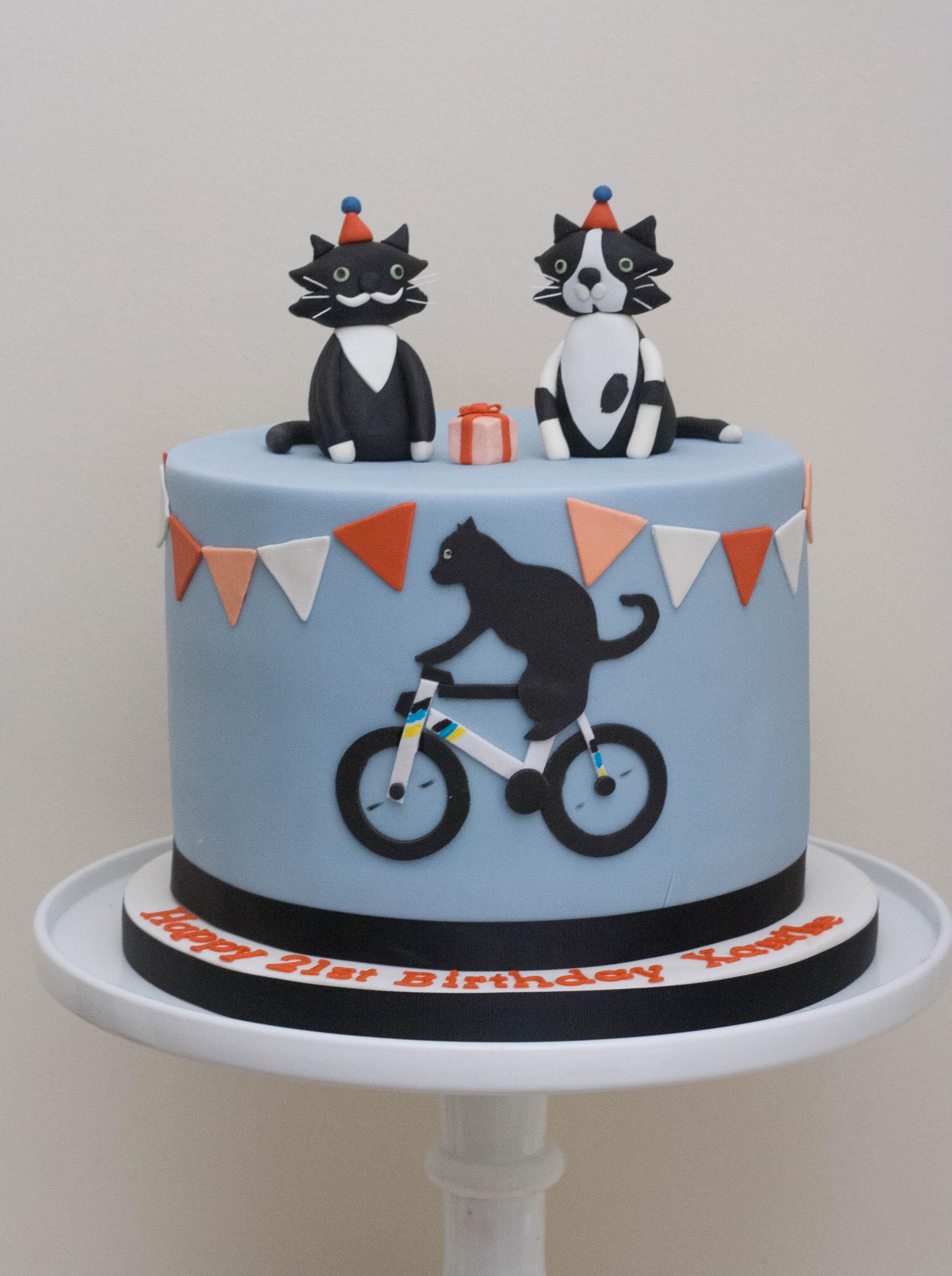 cat cycling cake vegan