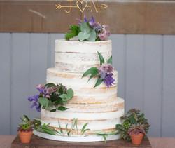 semi naked vegan wedding cake