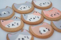 cat face vegan cookies