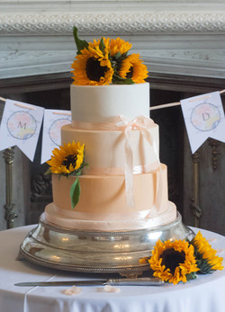 apricot sunflower vegan cake
