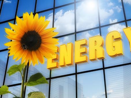 Unprecedented reach of 11094 MW average generated in wind energy